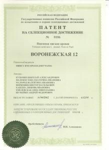 патент воронежская 12