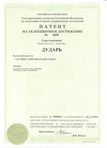 патент дударь