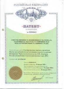 патент на изобретение 2