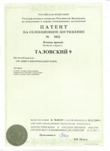патент таловский 9