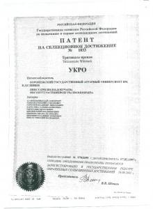 патент укро